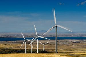 自由化で電気の値下げが期待されているが、期待はずれに終わるかもしれない。